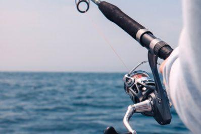 Sådan finder du en ny fiskestang!